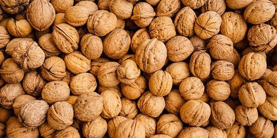 Walnut Exporters